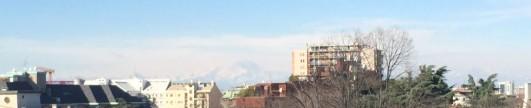 cropped-6_2-terrazzo.jpg